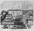 Die Gartenlaube (1872) b 403.jpg