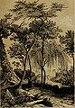 Die Pflanzendecke der Erde - populäre Darstellung der Pflanzengeographie für gebildete Naturfreunde (1859) (20946392601).jpg