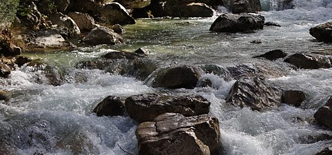 Discurrir del río Borosa.jpg