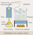 Distillation à la vapeur d'eau.png