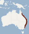Distribution of Scoteanax rueppellii.png