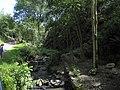 Divoká Šárka - panoramio (18).jpg