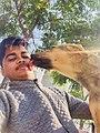 Dog Love.jpeg