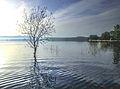 Dojran Lake 188.jpg