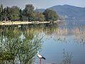 Dojran Lake 264.jpg