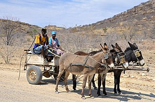 Donkey car in Namibia, Damaraland.jpg