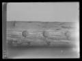 Dragonfana Karl XIs namnchiffer - Livrustkammaren - 45560.tif