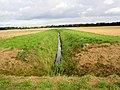 Drainage dike. - geograph.org.uk - 524043.jpg