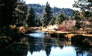 Charles S. Drew - Drews Creek in Oregon's Fremont National Forest