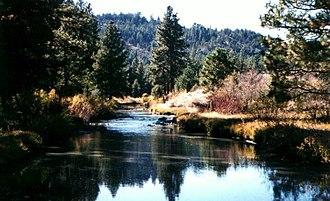 Fremont National Forest - Drews Creek, Fremont National Forest