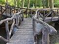 Drie-armige houten brug, Stania State, Oenkerk.JPG