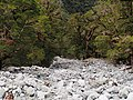Dry River Bed - 2013.04 - panoramio.jpg