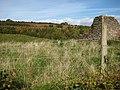Drybrook Limestone Quarry - geograph.org.uk - 1008937.jpg