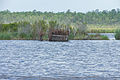 Duck Hunting Hide out (7315906940).jpg
