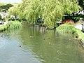 Duck pond, Sutton Poyntz - geograph.org.uk - 990761.jpg