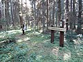 Dusetų sen., Lithuania - panoramio (114).jpg