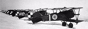 Polish 7th Air Escadrille - Albatros D.III (Oeffag) series 253 fighters of the escadrille at Lewandówka airfield in the winter of 1919-1920; the plane marked with a large I sign was flown by the escadrille's commanding officer, Cedric Faunt-le-Roy