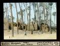 ETH-BIB-Memphis, Hütten unter Palmen-Dia 247-10958.tif