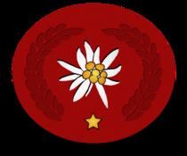 Edelweiss-Auszeichnung 1 Stern.png