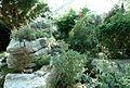 Edvard Anderson Conservatory - Bergianska trädgården - Stockholm, Sweden - DSC00331.JPG