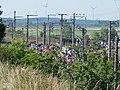 Ende Gelände Nord-Süd-Bahn blockade 23-06-2019 55.jpg