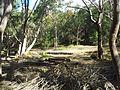 Engadine NSW 2233, Australia - panoramio (176).jpg