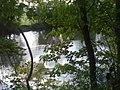Enz bei Oberriexingen - geo.hlipp.de - 42038.jpg
