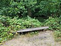 Epping Forest 20170727 112603 (49374660861).jpg