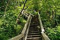 Escalier - Sentier pédestre du parc linéaire Wendake.jpg