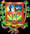 Escudo del Municipio Libertador - Edo. Carabobo.png