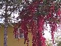 Esenyurt-Villakent, Sivas Merkez-Sivas, Turkey - panoramio (1).jpg