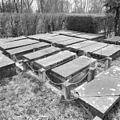 Exterieur BEGRAAFPLAATS, GRAFZERKEN (VELD 1882) - Ouderkerk aan de Amstel - 20311593 - RCE.jpg
