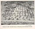 FMIB 36912 Sables des Dunes fixes, en Hollande, par des Bouchons de Joncs.jpeg