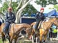 FRU Mount Police.jpg