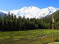 Fairy Meadows Nanga parbat Pakistan.JPG