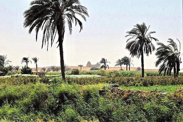 Oase Al-Fayoum
