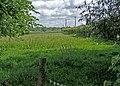 Farmland - geograph.org.uk - 851156.jpg