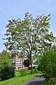 Feldbach - GLT 58 - Seniorenpark II.jpg