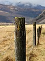 Fence next to Christopher Hut, St James Walkway, New Zealand (52).jpg