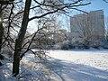 Fennpfuhlpark Winter Januar 09 45.JPG