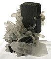 Ferberite-Quartz-252616.jpg
