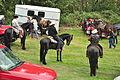 Fiestas Patrias Parade, South Park, Seattle, 2015 - preparing the horses 07 (21552364005).jpg