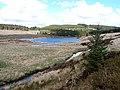 Fign Aberbiga beside Llyn Clywedog - geograph.org.uk - 787814.jpg