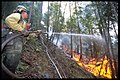 Firefighter hosing flames (26641916074).jpg