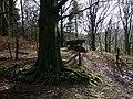 First sight of Gwal-y-filiast - geograph.org.uk - 1702670.jpg