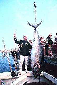 Fish1316.jpg