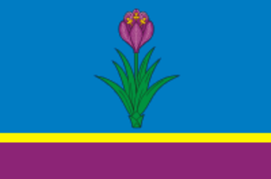 Mozdok - Image: Flag of Mozdok (North Ossetia)