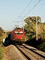 Flickr - nmorao - Carvão, Alcácer, 2008.07.29.jpg