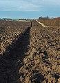 Flinton field - geograph.org.uk - 1582993.jpg
