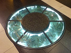 Floor - Floors may incorporate glass, mosaic or other artistic expression.